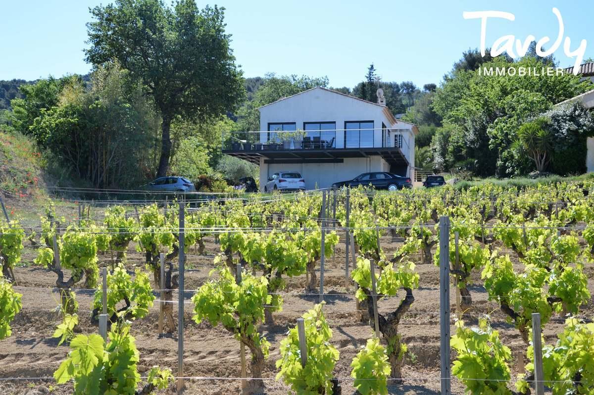 Villa contemporaine au milieu des vignes - Le Castellet - Le Castellet