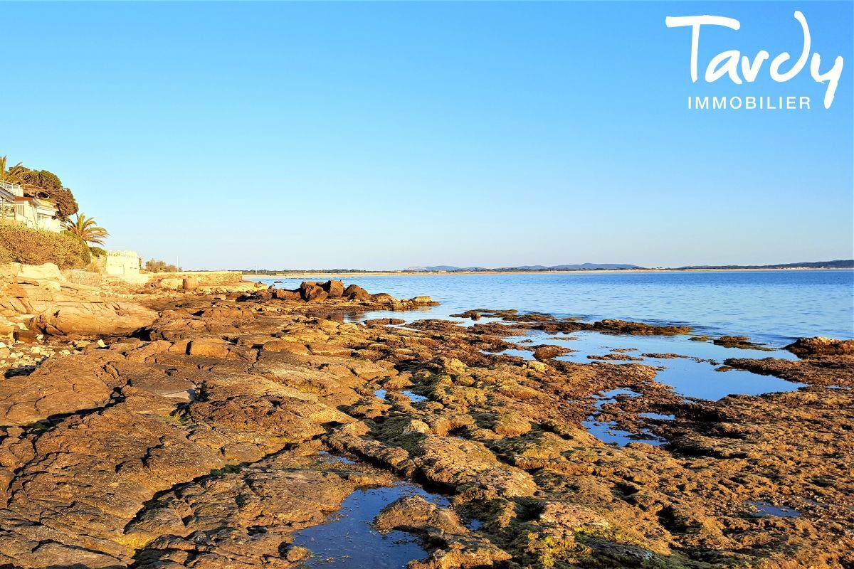 PIEDS DANS L'EAU SPOT DE L'ALMANARRE - Hyères - Premier rang de mer