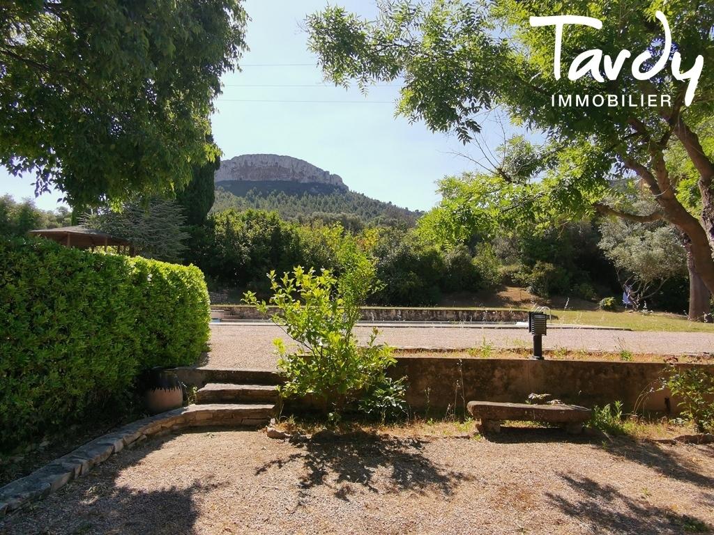 Une Propriété dans les vignes, au calme à Cassis - Cassis - Tardy Luxe