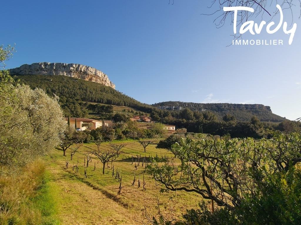 Villa à rénover fort potentiel vue mer et vignes - Cassis 13260 - Cassis