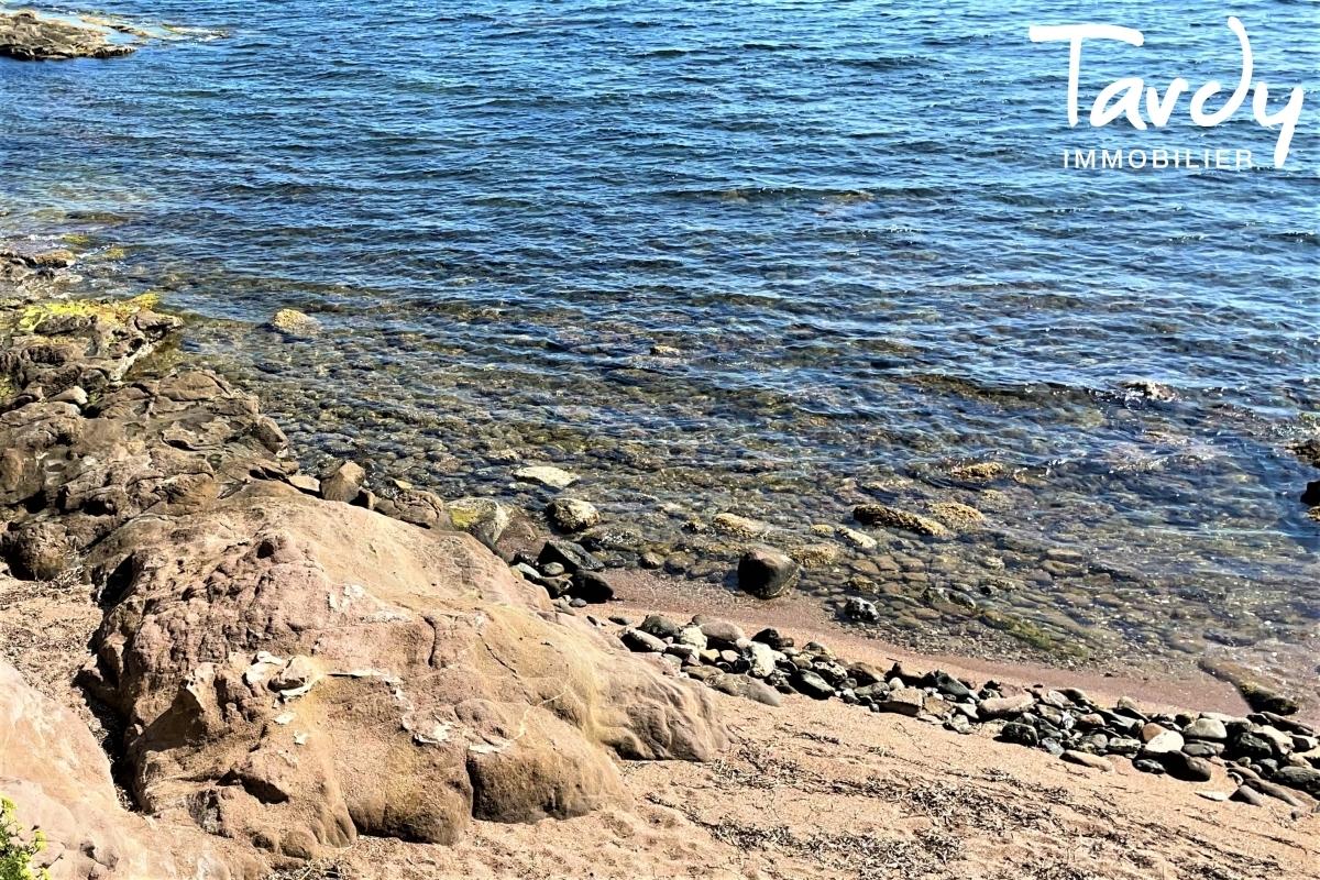 Propriété pieds dans l'eau avec accès mer - Font Brun 83320 CARQUEIRANNE - Carqueiranne - Propriété bord de mer Var