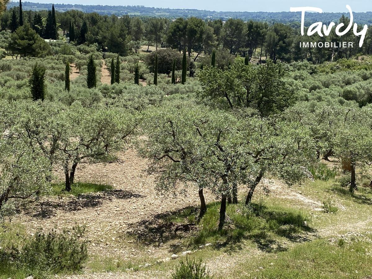 Beau Mas en pierre proche Les Baux de Provence - Les Baux-de-Provence