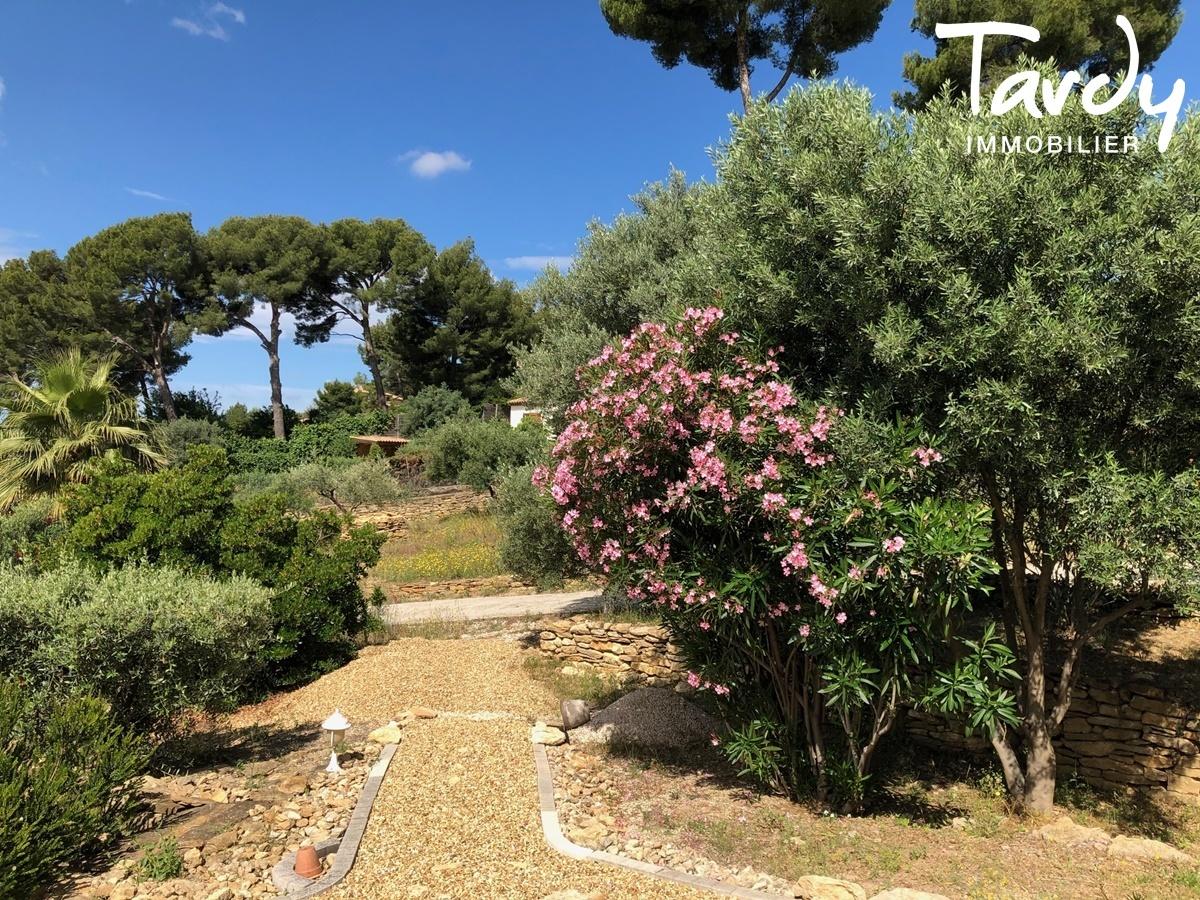 Propriété familiale, possibilité 2 villas - Les Lauves 83740 La Cadière d'Azur - La Cadière-d'Azur - LA CADIERE D'AZUR