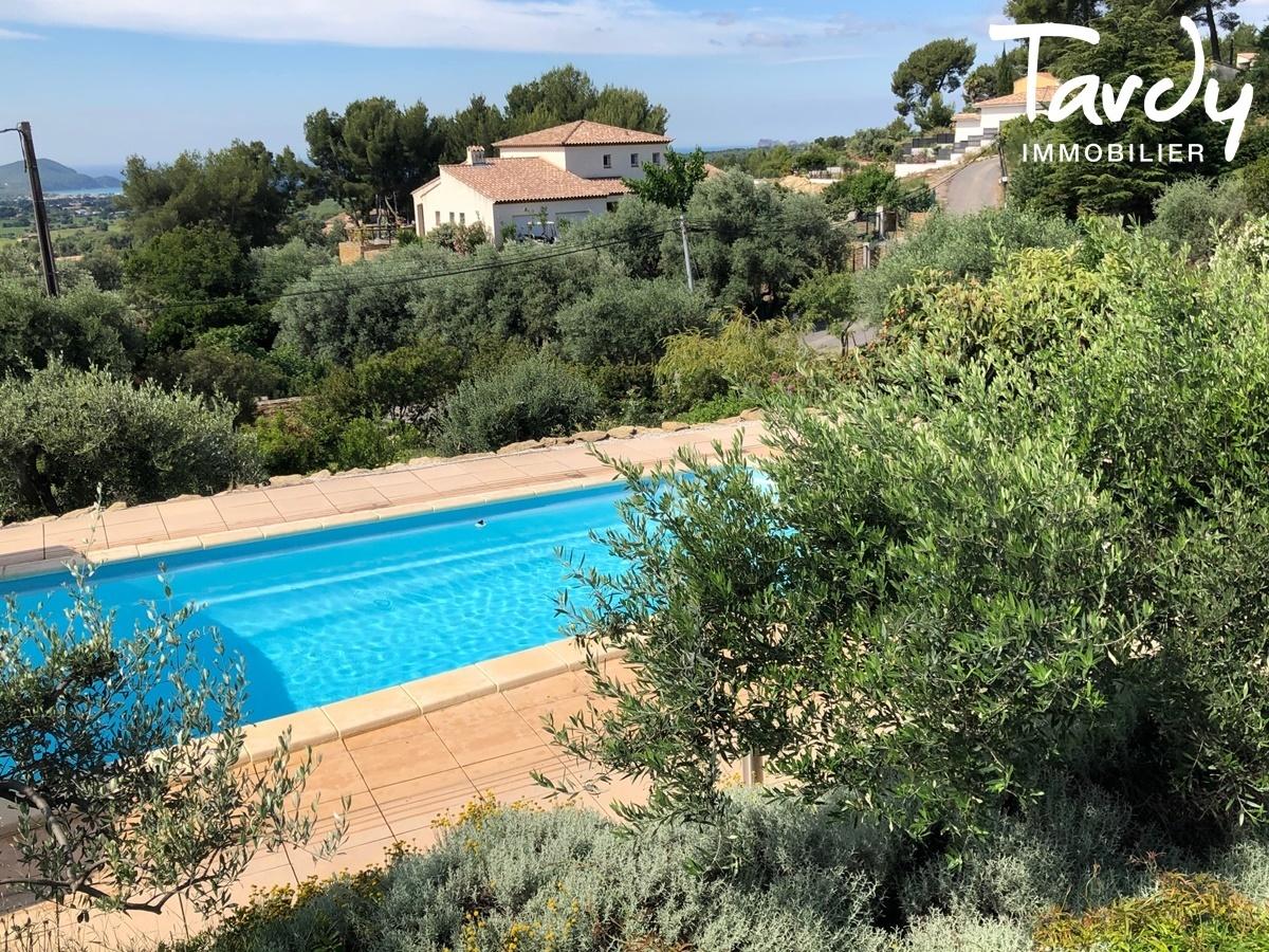 Propriété familiale, possibilité 2 villas - Les Lauves 83740 La Cadière d'Azur - La Cadière-d'Azur - PROPRIETE FAMILIALE