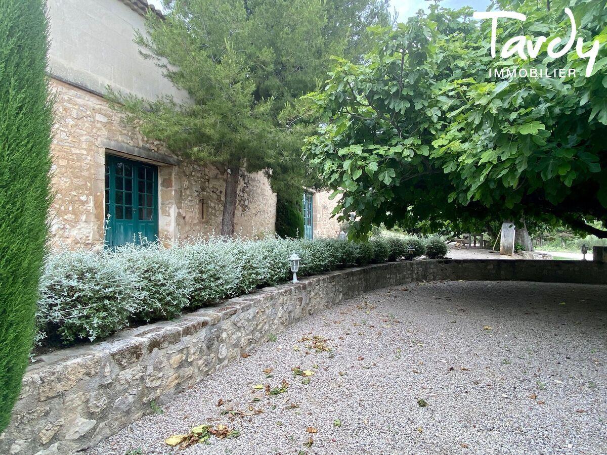 Magnifique propriété oléicole de caractère - 13520 Maussane-les-Alpilles - Maussane-les-Alpilles