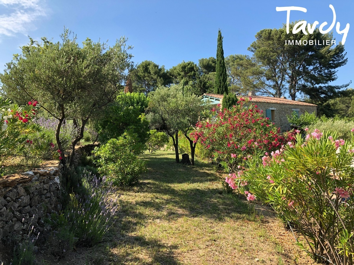 Mas Provençal de caractère entre vignes et collines - 83330 Le Castellet - Le Castellet