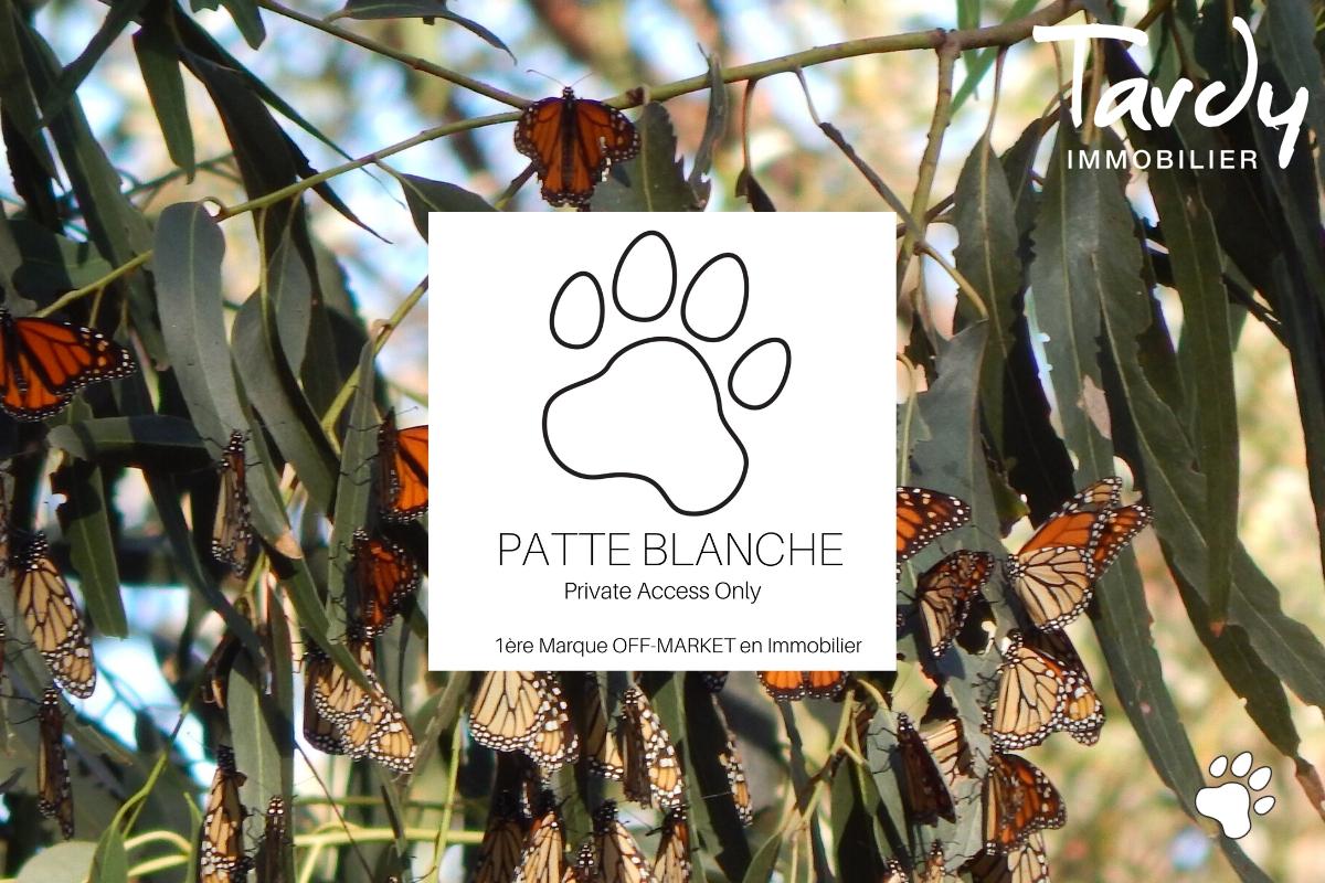 SANARY SUR MER DEMEURE DE CHARME - Sanary-sur-Mer - SANARY SUR MER PATTE BLANCHE