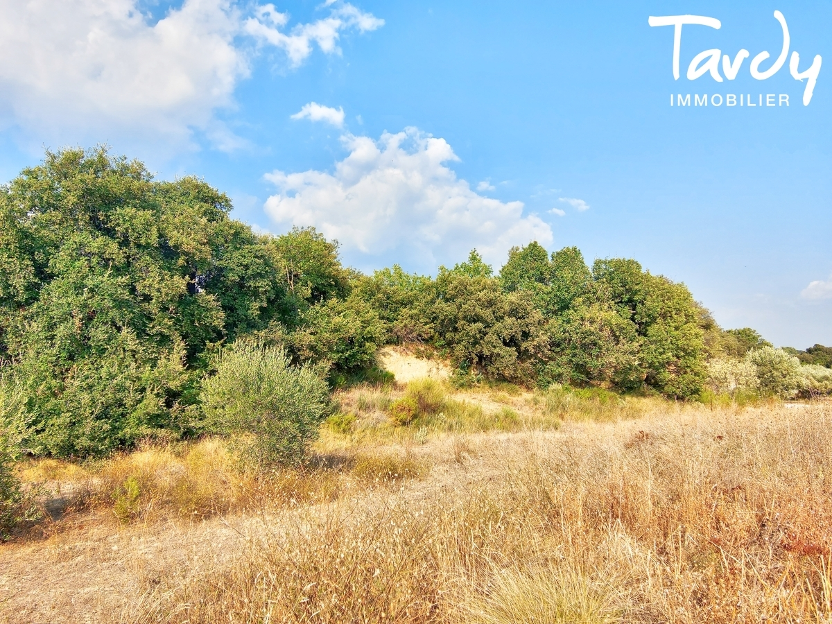 Terrain constructible - Environnement exceptionnel - Vaugines - Lourmarin