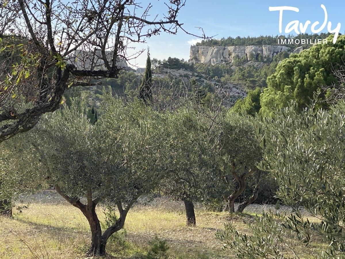 Maison d'architecte, vue panoramique - 13520 LES BAUX DE PROVENCE - Les Baux-de-Provence