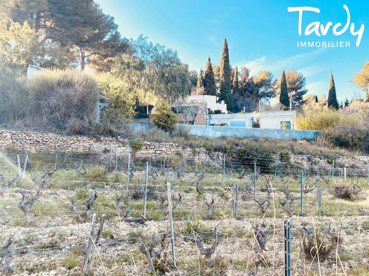 Villa d'architecte vue vignes, plage à pieds - 83270 Saint-Cyr-sur-mer  - Saint-Cyr-sur-Mer - Maison dans les vignes Saint Cyr sur mer