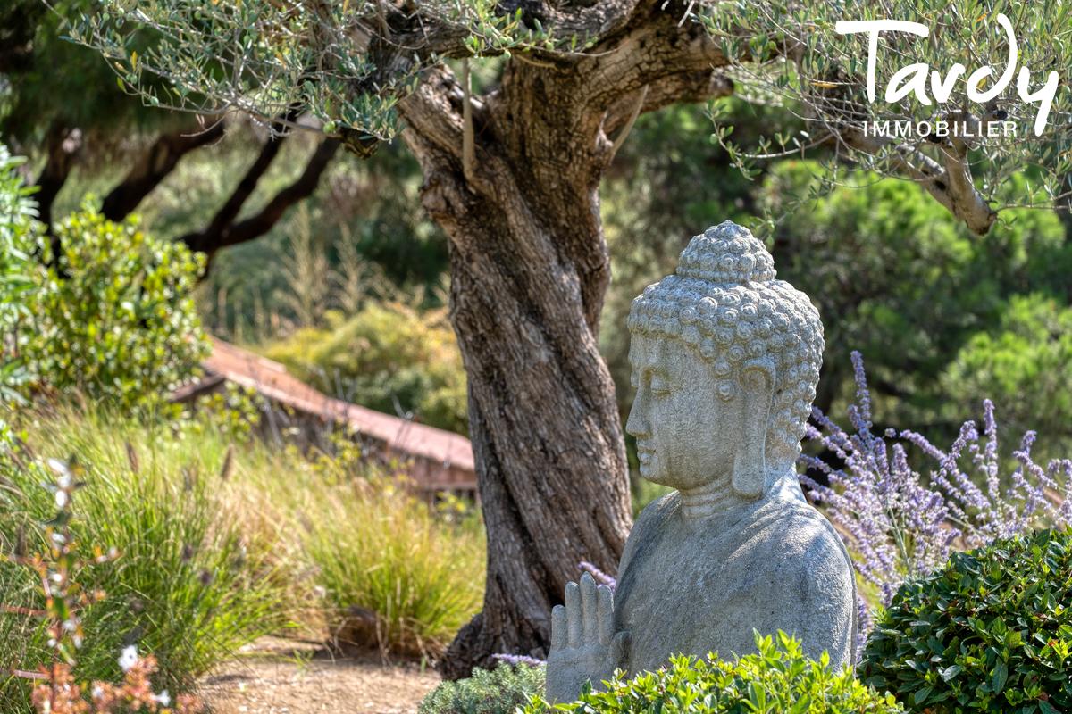 Propriété de plain pied vue dominante mer et colline - 83350 RAMATUELLE - Ramatuelle