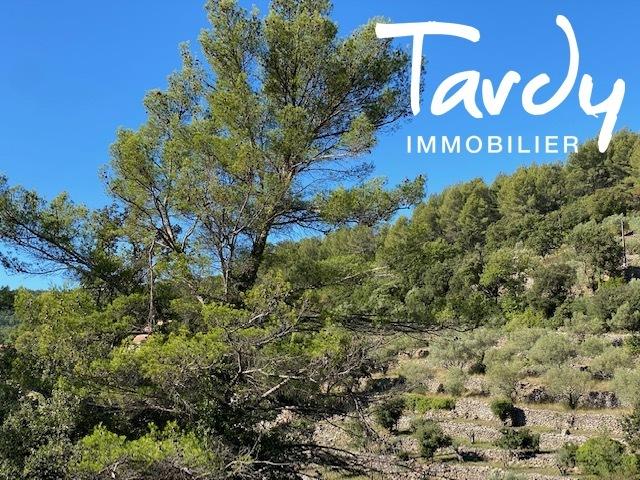 Villa 7 chambres, campagne Provençale  - 83330 EVENOS - Évenos